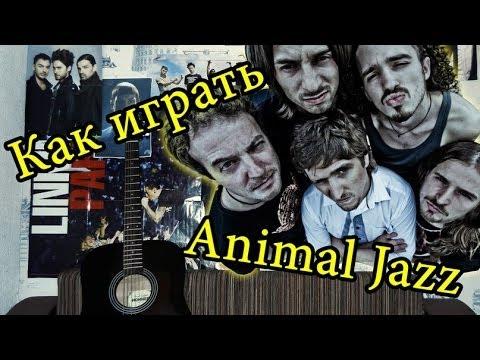 Animal ДжаZ - Три Полоски (Видео Урок Как Играть На Гитаре) Разбор