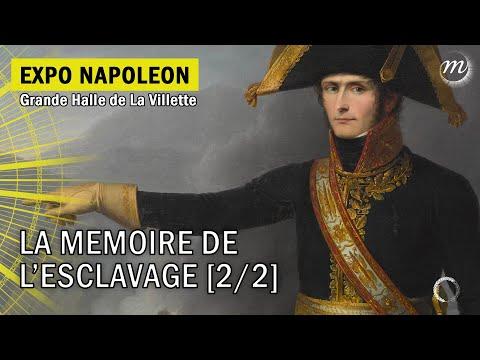 Napoléon et la mémoire de l'esclavage (2/2)