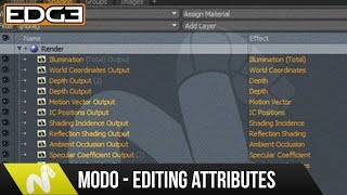 Modo Tutorial - How To Edit Multiple Attributes At Once