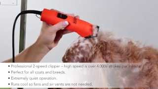 Andis ProClip UltraEdge® Super 2-Speed Detachable Blade Clipper - Blaze, 22760