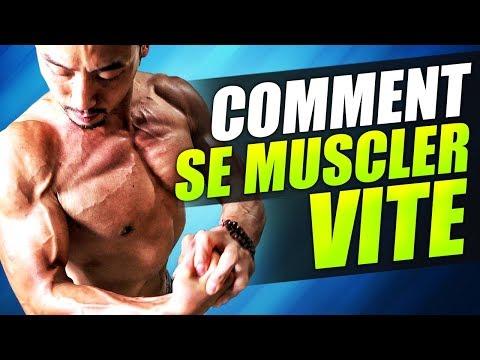 Le muscle lombaire