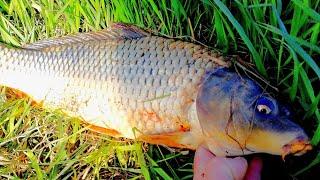 Рыбалка  весной в Запрет ОПЯТЬ ОТДАЁМ РЫБУ ЧТО ПОЙМАЛИ