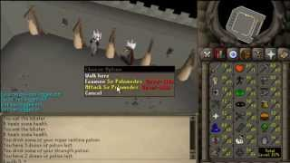 2007Scape and DEADMAN: Knight's Training Ground Ultimate Guide w/ Safespot (EASY for low gear-stats)