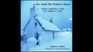 See Amid The Winter's Snow. Traditional Christmas Carol
