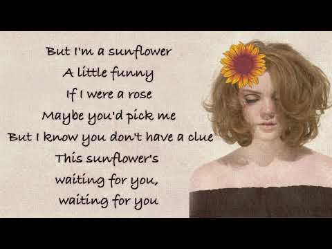 Sunflower - Shannon Purser (Sierra Burgess is a Loser OST) [Full HD] lyrics