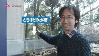 2019/03/13放送・知ったかぶりカイツブリにゅーす