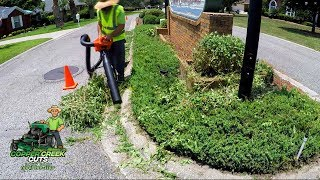 Front Entrance Landscaping For Neighborhood (Trimming Overgrown Shrubs& ECHO Shred N Vac)