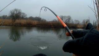 Рыбалка белгород гремучий