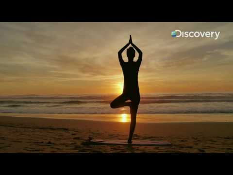 Inside Out – The Science of Ayurveda
