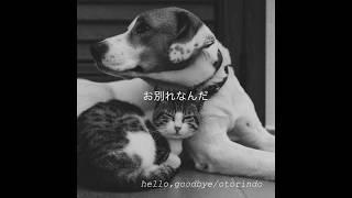 hello,goodbye