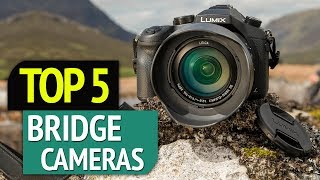 TOP 5: Best Bridge Cameras 2019