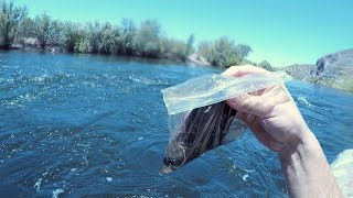 I Found a FULL Plastic Baggie Underwater in the River! (Returned to Owner - Amazing Reaction!)