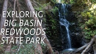 Big Basin Redwoods State Park Hikes: Berry Creek Falls & Redwoods Trail