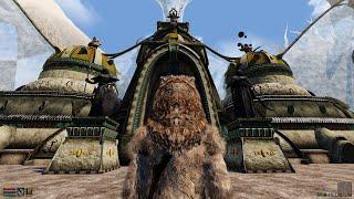 Morrowind 2020 Remastered 1440p OpenMW Normal Maps Vtastek Shaders - Long showcase