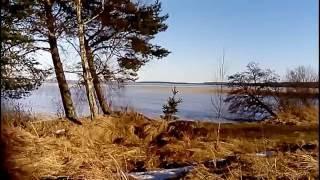 Серпуховской район рыбалка отрадное