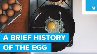 Eggs (Food)