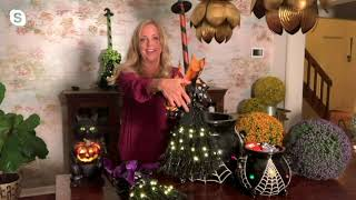 Hay & Harvest Indoor/Outdoor 3' Illuminated Witches Broomstick on QVC