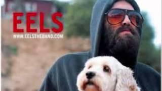 Eels-   It's A Motherfucker (Lyric)