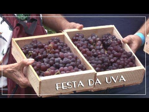 Jundiaí recebe visitantes para a 37ª Festa da Uva