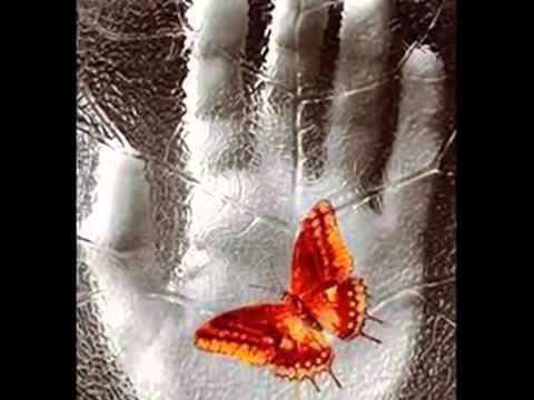 , title : 'Paolo Conte - Tra le tue braccia'
