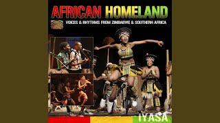 Amazulu (The Zulus)