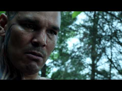 Banshee 3.06 (Preview)