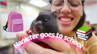 Brought My Hamster To Highschool Lol