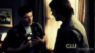 team free will   some nights