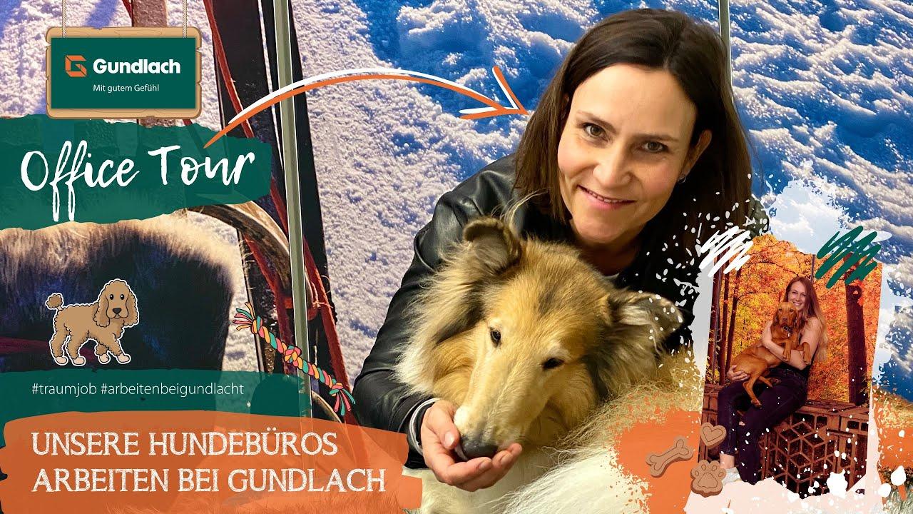 Unsere Hundebüros | Office Tour | Arbeiten bei Gundlach