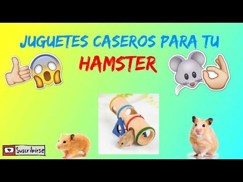 como hacer juguetes caseros para tu hamster (mis mascotas)