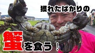 川で獲れた巨大蟹を食う‼#2