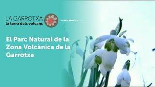 Video del alojamiento Mas Cantallops