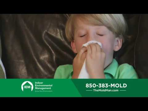 Wet Weather in North Florida brings Crawl Space Mold and Indoor Allergies