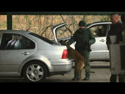 Can US border agents lawfully search you? – BBC News