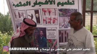 تطعيم الأشجار بالعين مع المزارع علي الصلاح | أبوصلاح