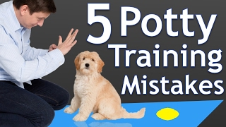 The 5 Most Common Potty Training Mistakes