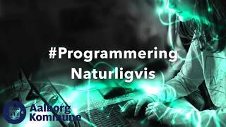 Hvad laver en programmeringsguide egentlig?