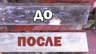 Как убрать плесень грибок с сосны с дерева