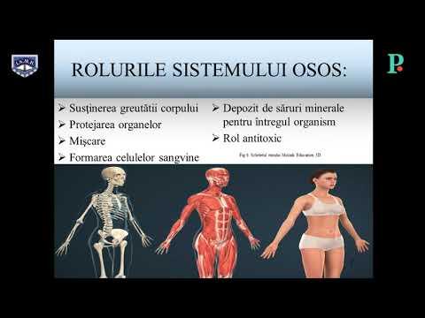 Artroza simptomelor și tratamentului articulației șoldului stâng