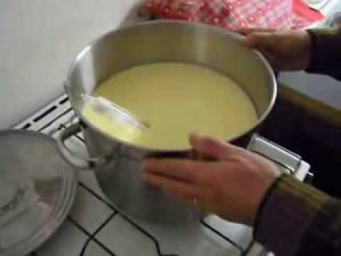 Comme se préparera à la remise de lanalyse sur la lamblia