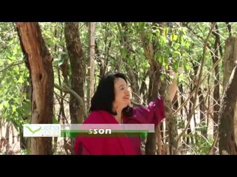 Aromaterapia - Sandalo - Lydia Bosson