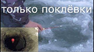 Зимняя рыбалка поклевки