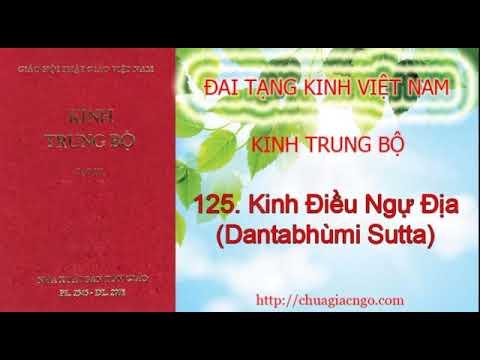 Kinh Trung Bộ - 125. Kinh Điều ngự địa