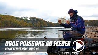 Pêche des gros poissons au feeder - peche-feeder VLOG#2