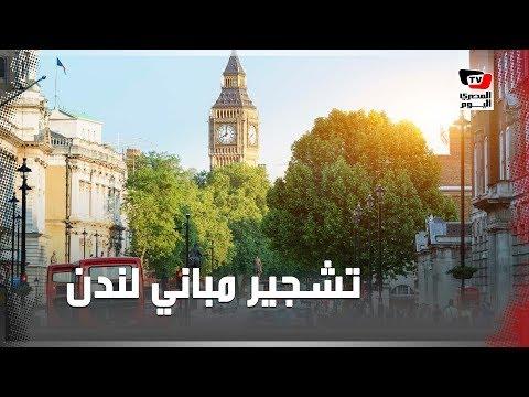 مصري ينفذ أكبر مشروع لتشجير مباني لندن