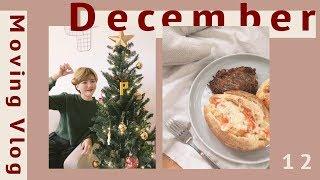 搬家日記 4|我們的第一顆聖誕樹🎄!還有去染頭髮、做早午餐