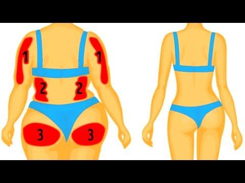 Der Effekt des Ingwers auf das Fett