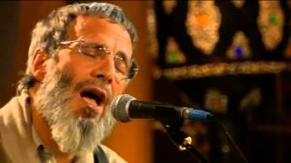 Yusuf Islam - Wild World Zulu Version (Live Yusuf's Cafe Session 2007)