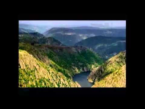 Nogueira de Ramuín en la Ribeira Sacra, Tierra de Afiladores