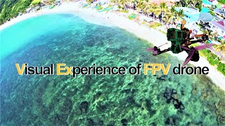 Visual Experience of FPV | Freestlye Drone Cinematics | Lost in Your Eyes (feat. Anja) by TFLM